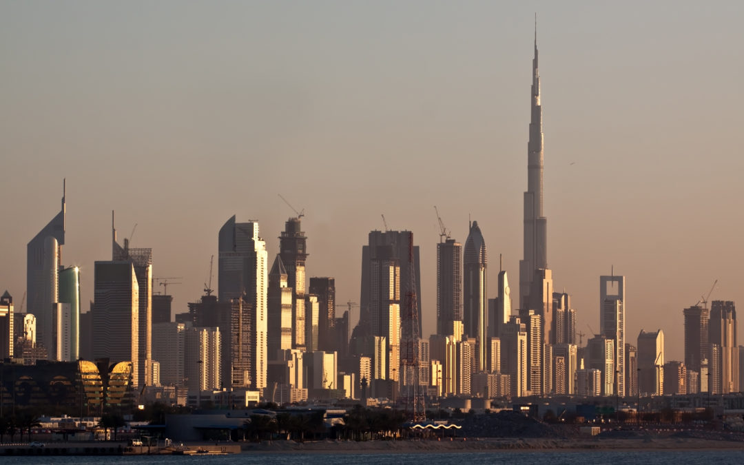 The United Arab Emirates and Africa: A Pivotal Partnership Amid a South-South Commercial Revolution